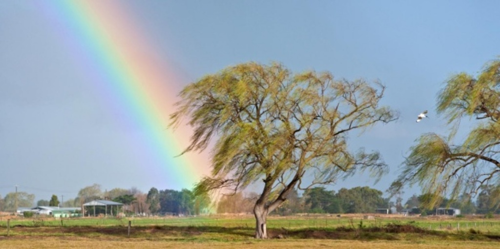 Rainbows: a reflection of how we relate to each other