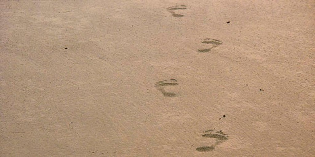 The way we live leaves an imprint on many people and places, but how far do these imprints travel?