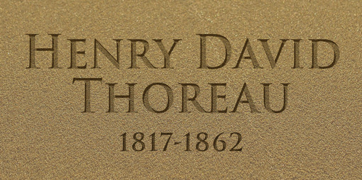 Who is the true Henry David Thoreau? - thumbnail version