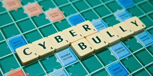 Cyber-bullies & internet trolls - thumbnail version